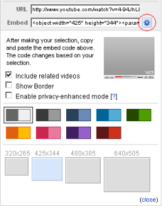 YouTube Video Customisation options